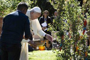 Tiempo creación papa francisco